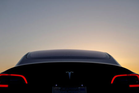 Point/Counterpoint: The Case on Tesla