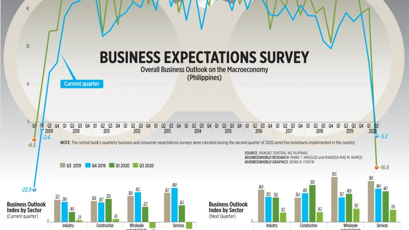 Business expectations survey (Q3 2020)