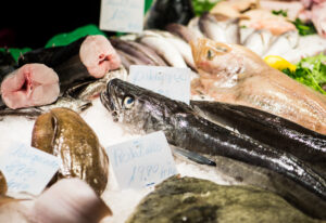 Government puts £23m support fund in place for struggling fishing firms