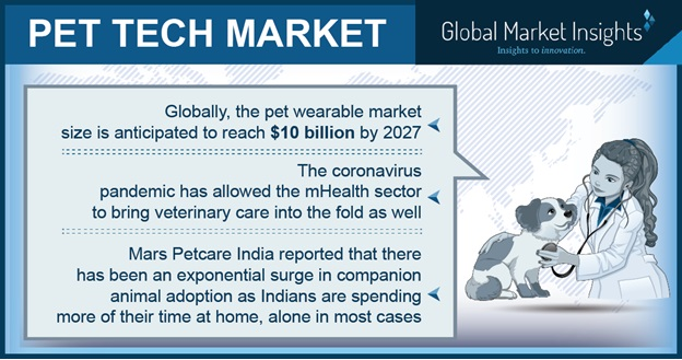Taking a closer look at the evolution of pet tech market during COVID-19 pandemic